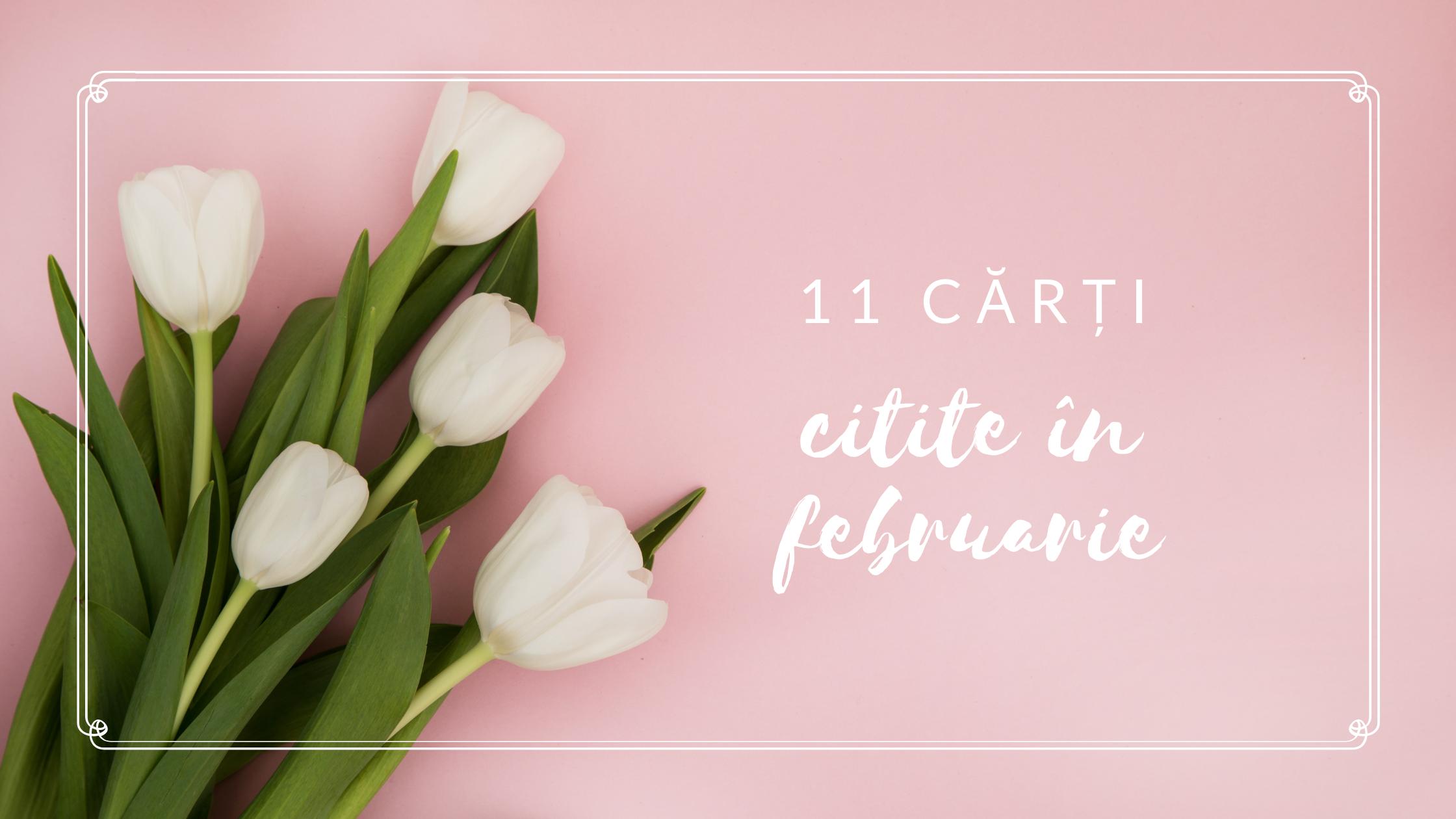 11 cărți citite în februarie